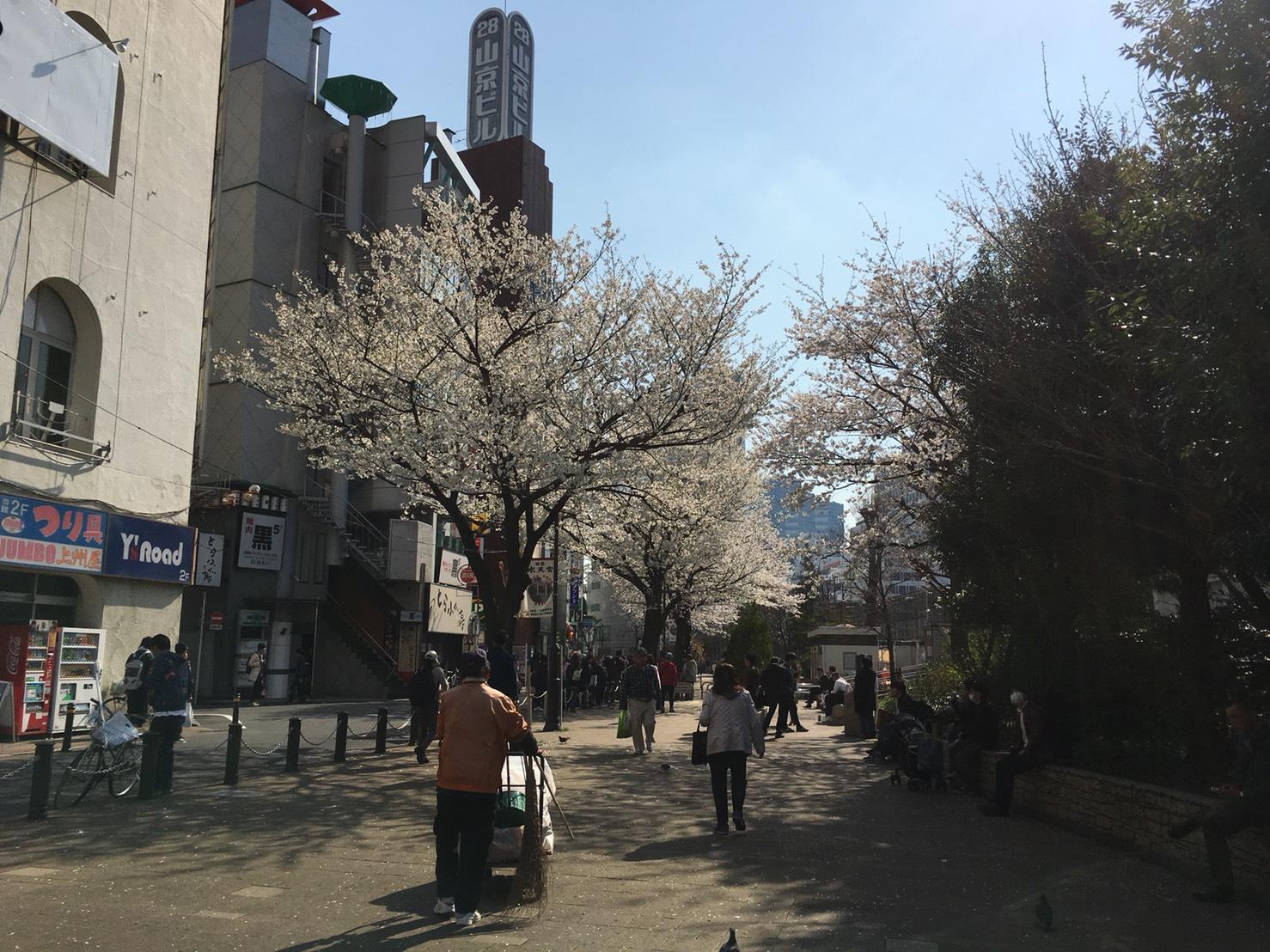 【池袋駅】春爛漫!公園まわって桜を見に行こう!池袋東口の満開公園お花見散歩コース。の池袋駅前公園3