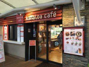【池袋駅】「サンシャイン水族館」で癒されようよ!ほら早く!の水族館の中のカフェ