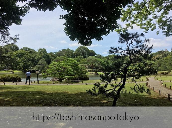 【駒込駅】歴史を学ぶいい日にしよう。和歌山市を模した江戸時代の庭園「六義園」で涼をとろう。の六義園の庭園内2