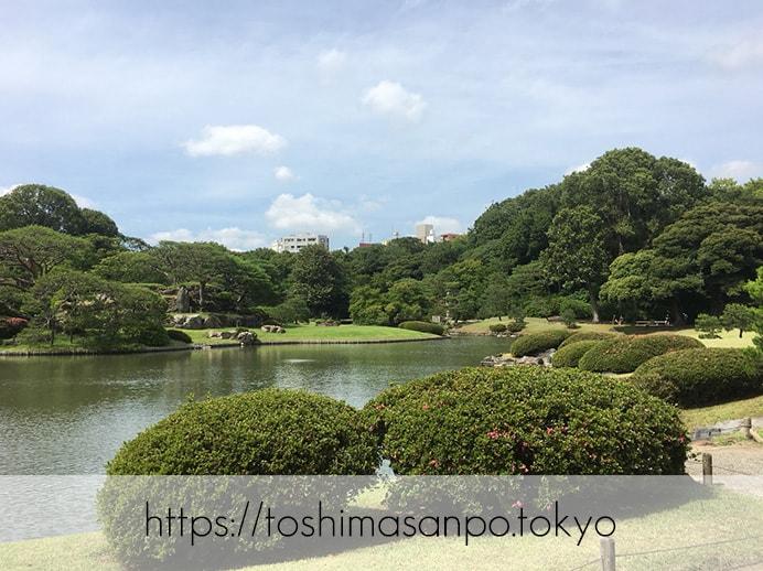 【駒込駅】歴史を学ぶいい日にしよう。和歌山市を模した江戸時代の庭園「六義園」で涼をとろう。の六義園の庭園内4