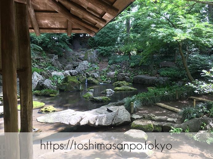 【駒込駅】歴史を学ぶいい日にしよう。和歌山市を模した江戸時代の庭園「六義園」で涼をとろう。の六義園の庭園内5