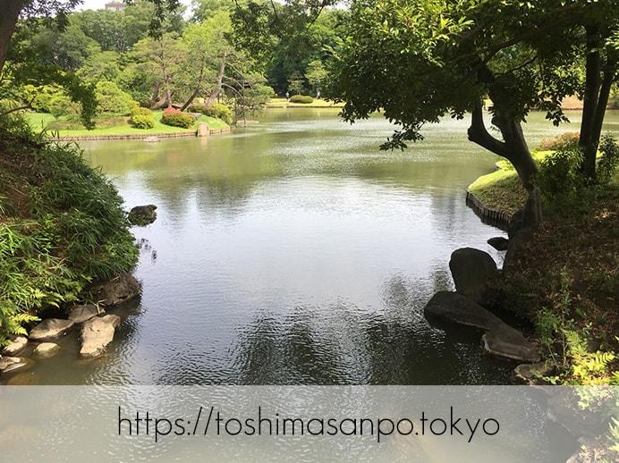 【駒込駅】歴史を学ぶいい日にしよう。和歌山市を模した江戸時代の庭園「六義園」で涼をとろう。の六義園の庭園内7