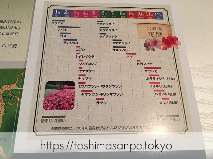 【駒込駅】歴史を学ぶいい日にしよう。和歌山市を模した江戸時代の庭園「六義園」で涼をとろう。の六義園の花歴