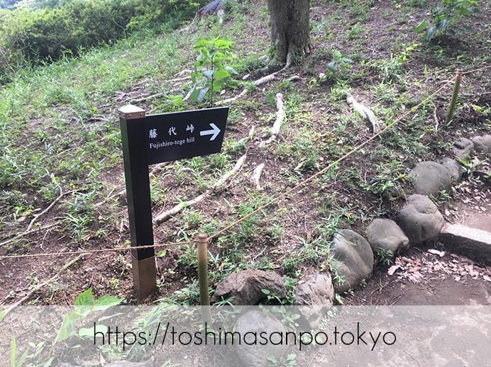 【駒込駅】歴史を学ぶいい日にしよう。和歌山市を模した江戸時代の庭園「六義園」で涼をとろう。の六義園の藤代峠1