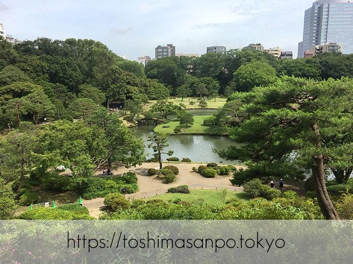 【駒込駅】歴史を学ぶいい日にしよう。和歌山市を模した江戸時代の庭園「六義園」で涼をとろう。の六義園を一望