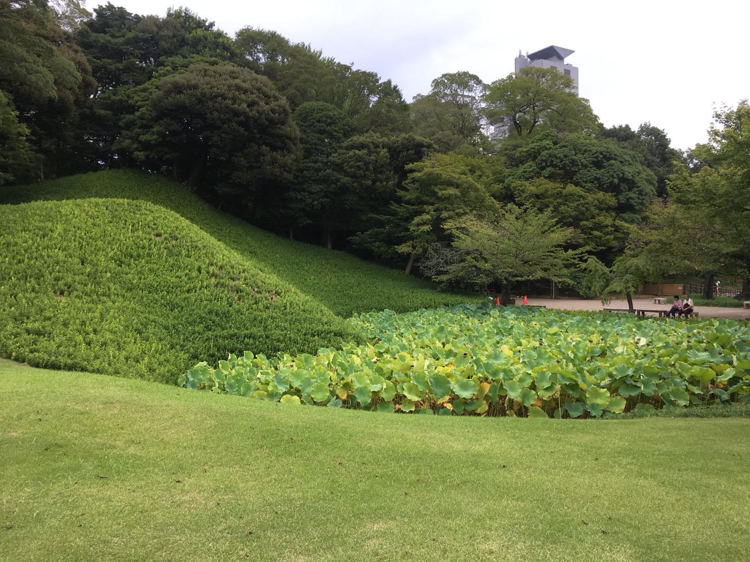 【飯田橋駅】江戸時代の中国趣味豊かな景観で一句「小石川後楽園」の小石川後楽園の庭園3