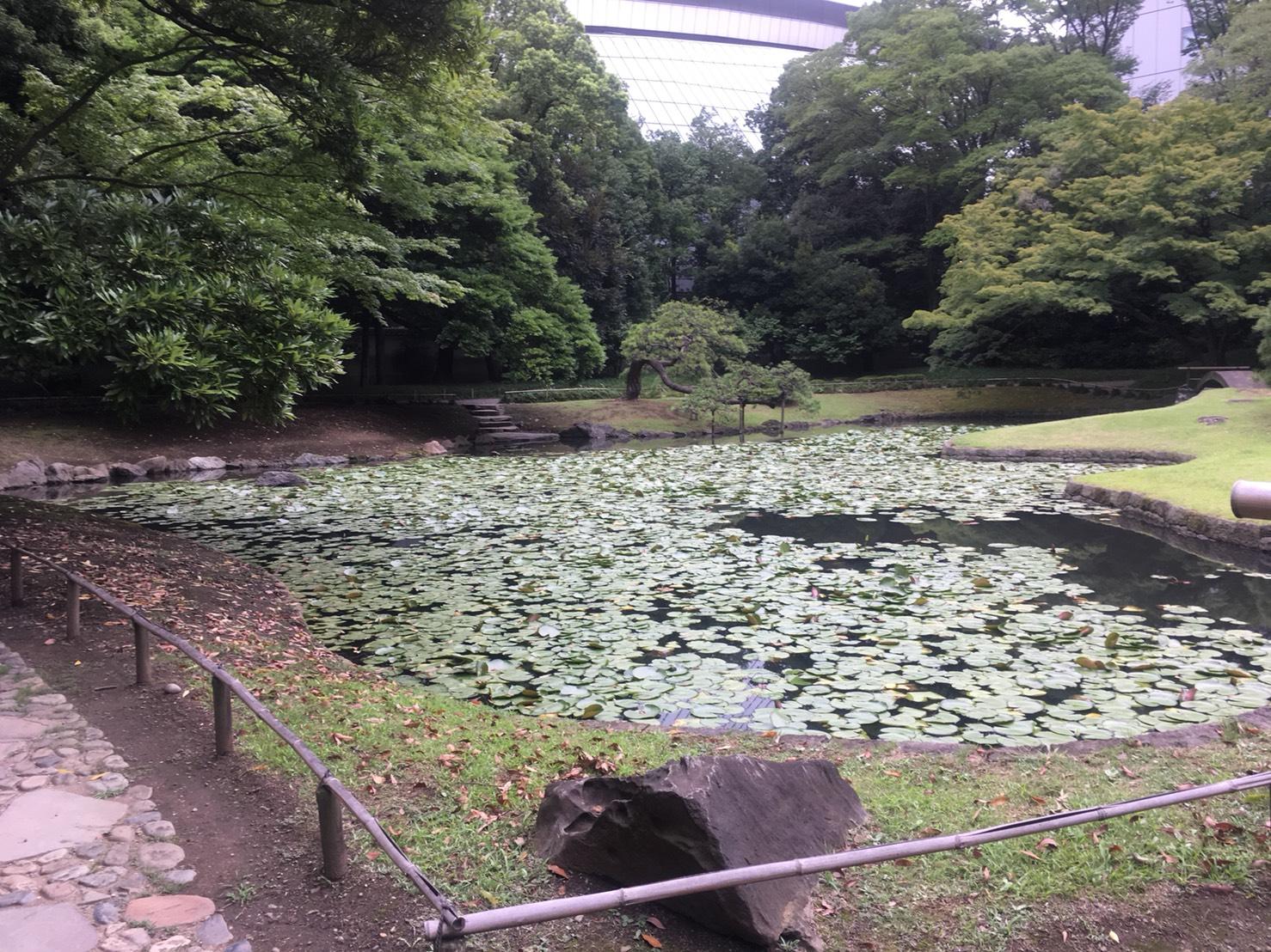 【飯田橋駅】江戸時代の中国趣味豊かな景観で一句「小石川後楽園」の内庭2