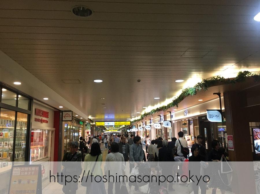 【上野駅】高速上野散歩を提案!大満足の絶品洋食「たいめいけん」のあとに上野動物園で超エンジョイの上野駅構内1