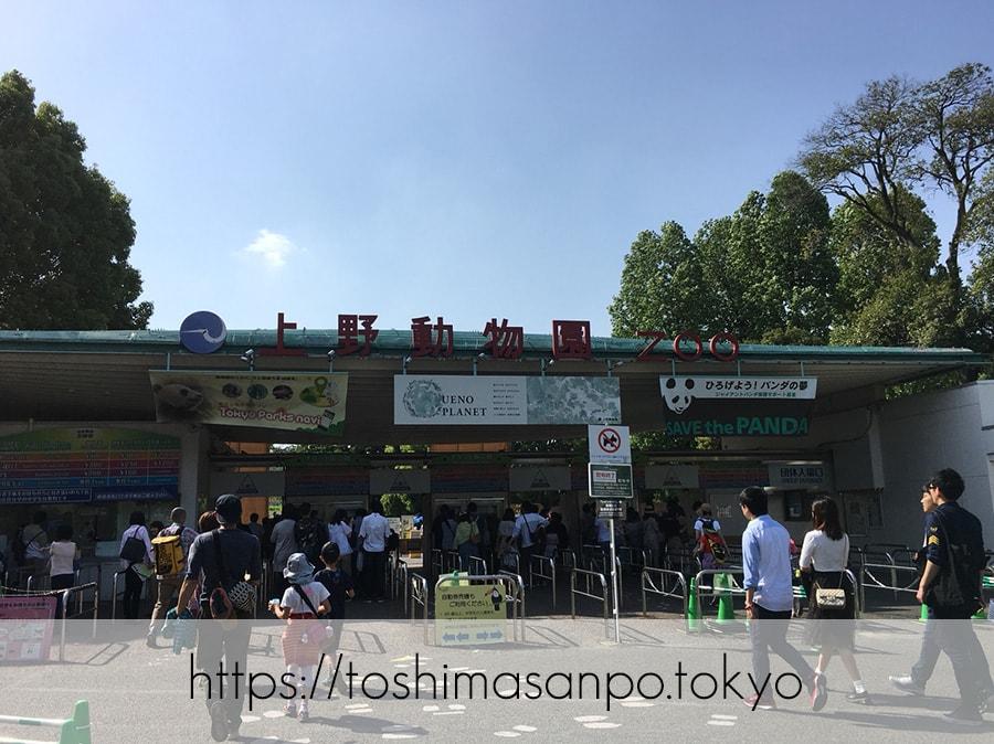 【上野駅】高速上野散歩を提案!大満足の絶品洋食「たいめいけん」のあとに上野動物園で超エンジョイの上野動物園の出入り口