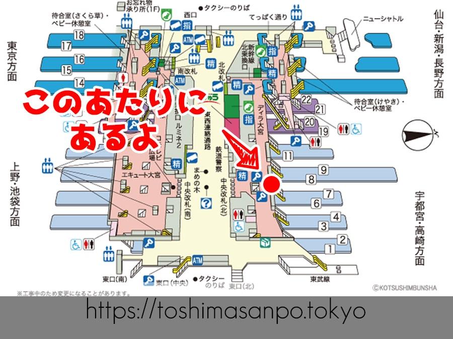 【番外編】「天ぷらせんべい」てなに?巷ではとっくに人気の土産物ぽいの大宮駅構内図