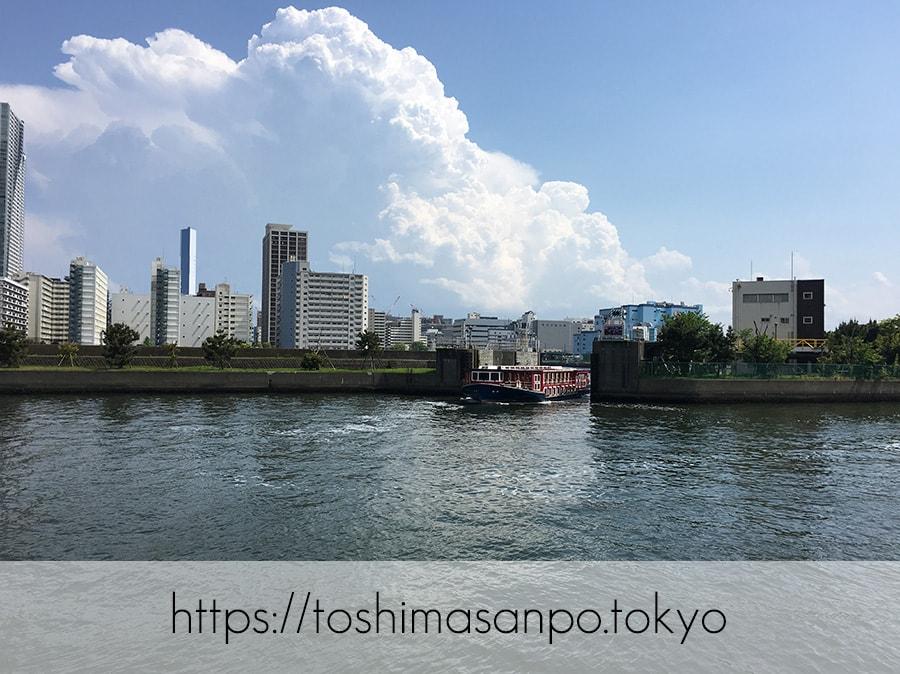 【汐留駅】水上バスにも乗れる!東京湾から繋がる江戸時代の広大な庭園「浜離宮恩賜庭園」の風情。の浜離宮恩賜庭園の水上バス1