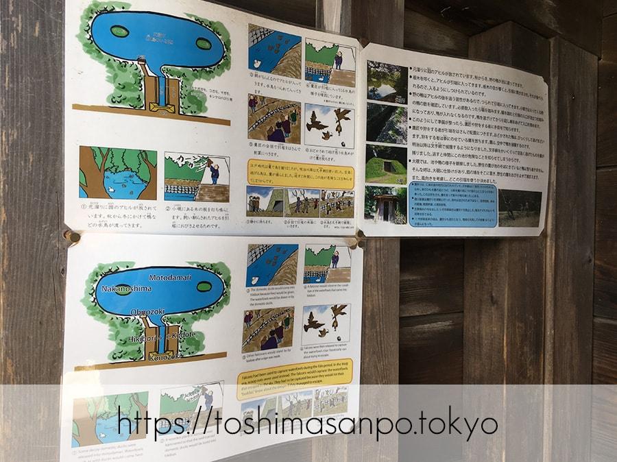 【汐留駅】水上バスにも乗れる!東京湾から繋がる江戸時代の広大な庭園「浜離宮恩賜庭園」の風情。の浜離宮恩賜庭園の鴨狩の説明