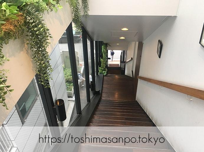 【新宿駅】いい雰囲気イタリアンランチするなら超おすすめ「オッティモ・シーフード・ガーデン」へ入る階段